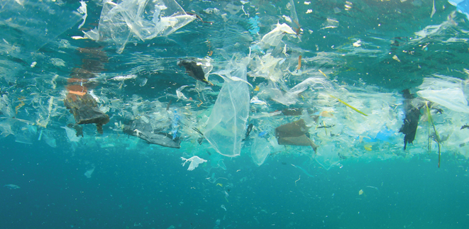 GLOBAL ALLIANCE FORMED TO END PLASTIC WASTE IN THE ENVIRONMENT