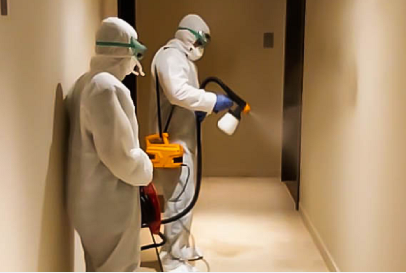 mplus launches disinfection service for apartments, villas and offices