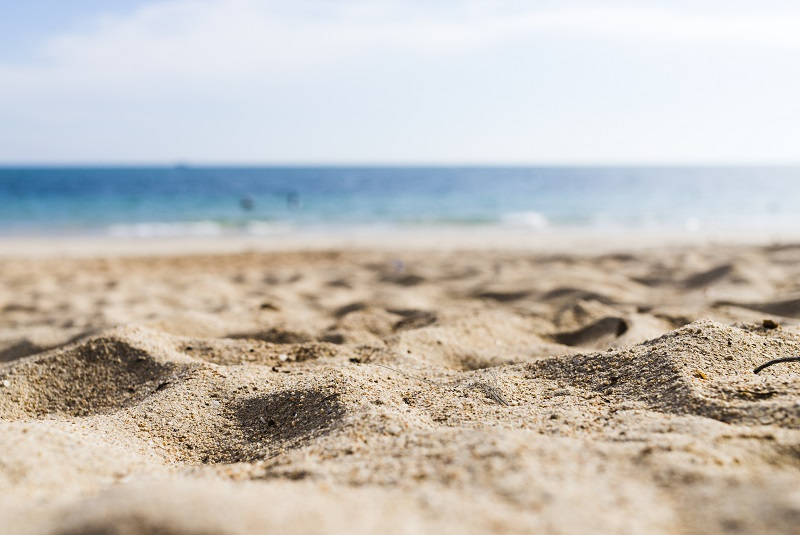 Beach cleaning: All you need to know