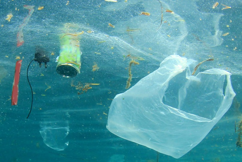 550 groups ask Biden to solve plastic pollution crisis with eight key executive actions