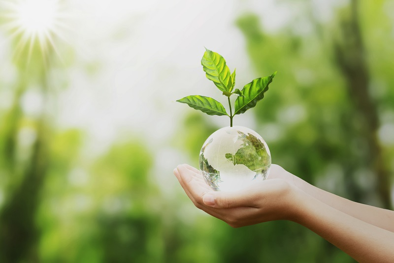 Taking the circular path for sustainable development