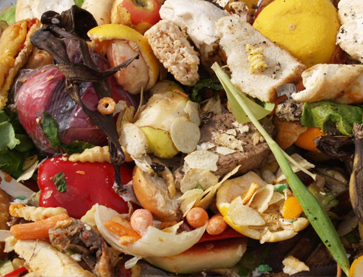 UAE hotel adopts innovative solution for efficient food waste management