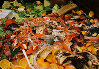 First-ever global standard to measure food waste launched by international partnership